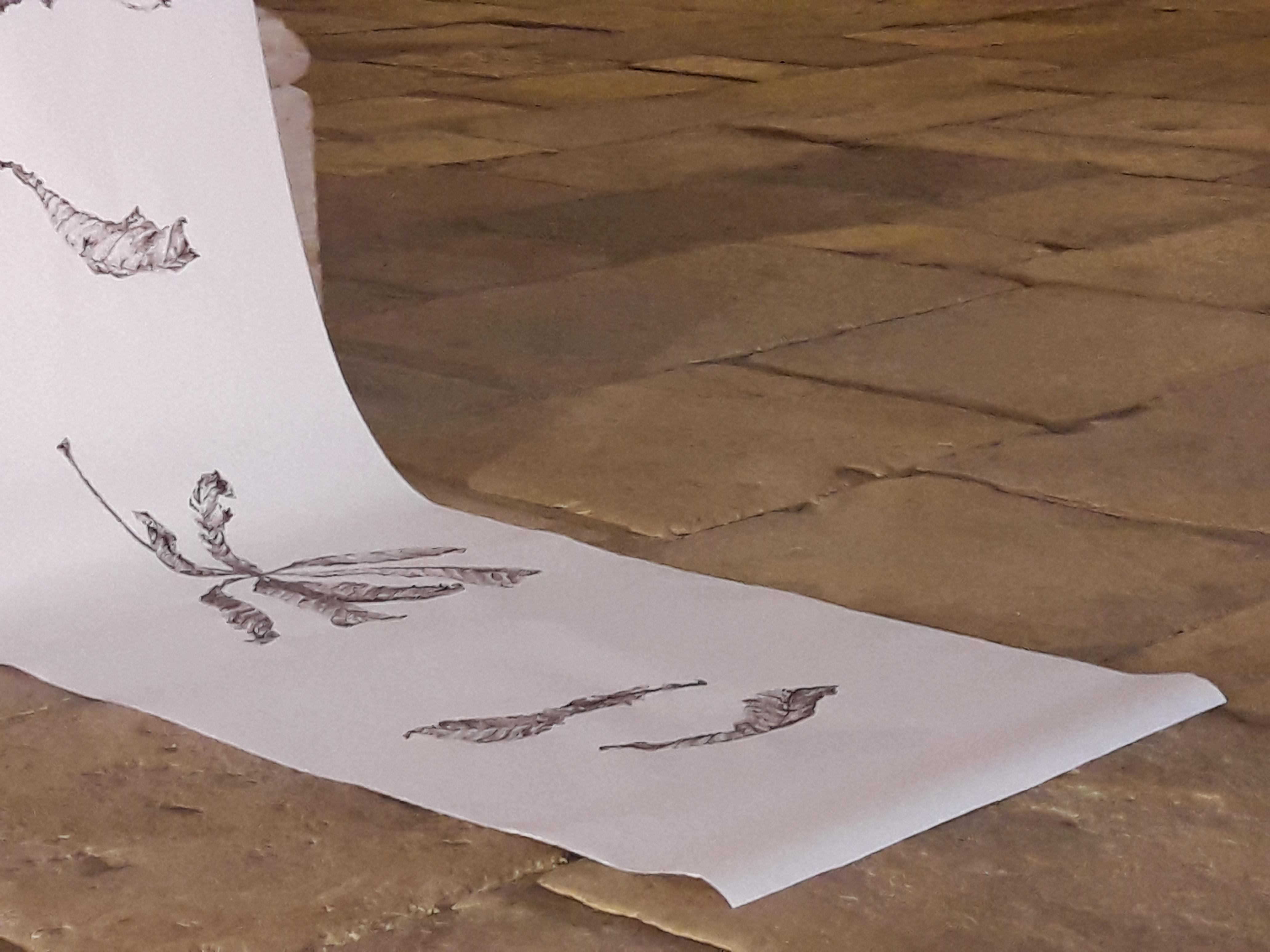 Papier, rouleau (feutre sépia), porcelaine