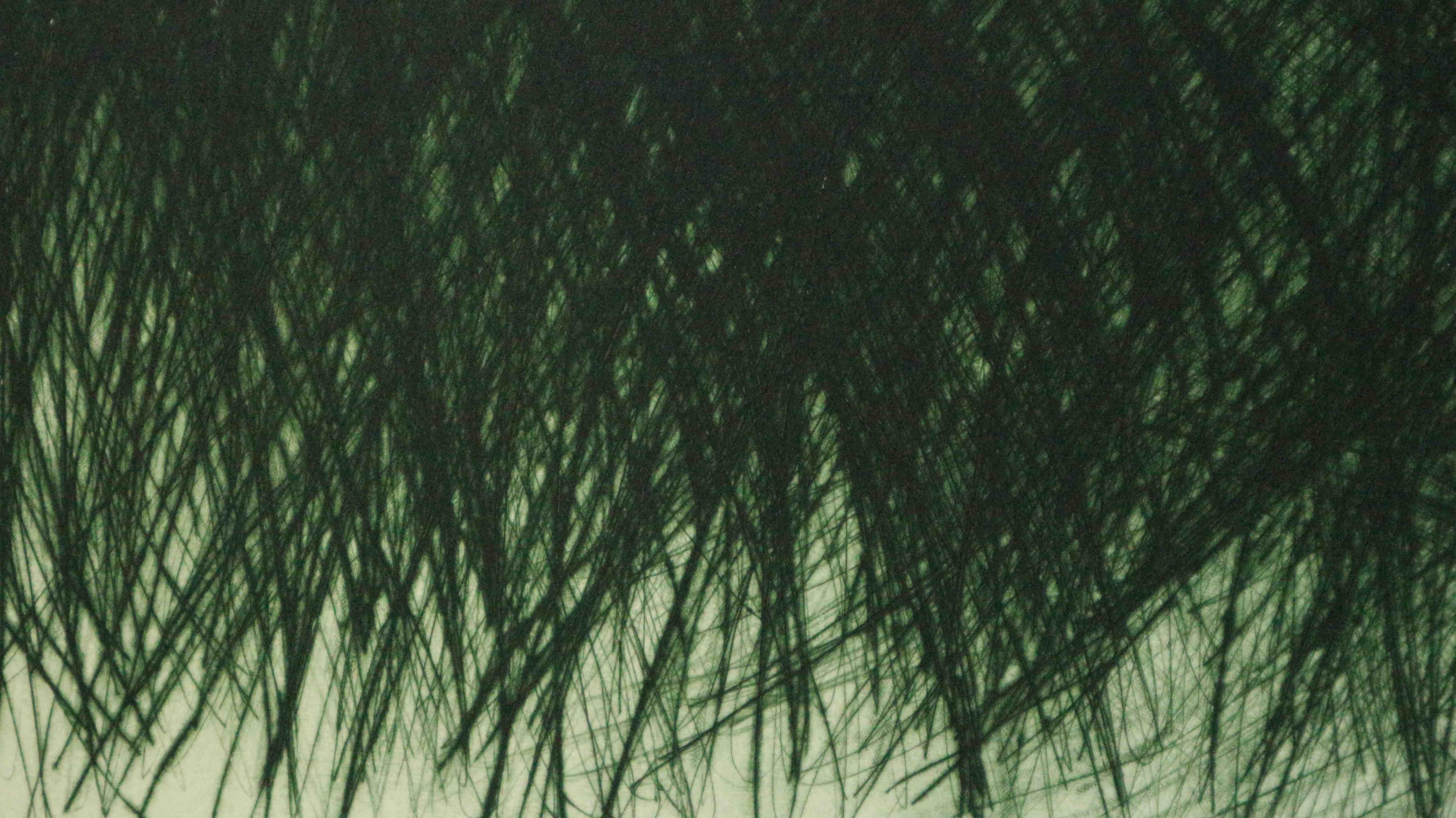 Printemps II (détail) - Pointe sèche, 65x83 cm