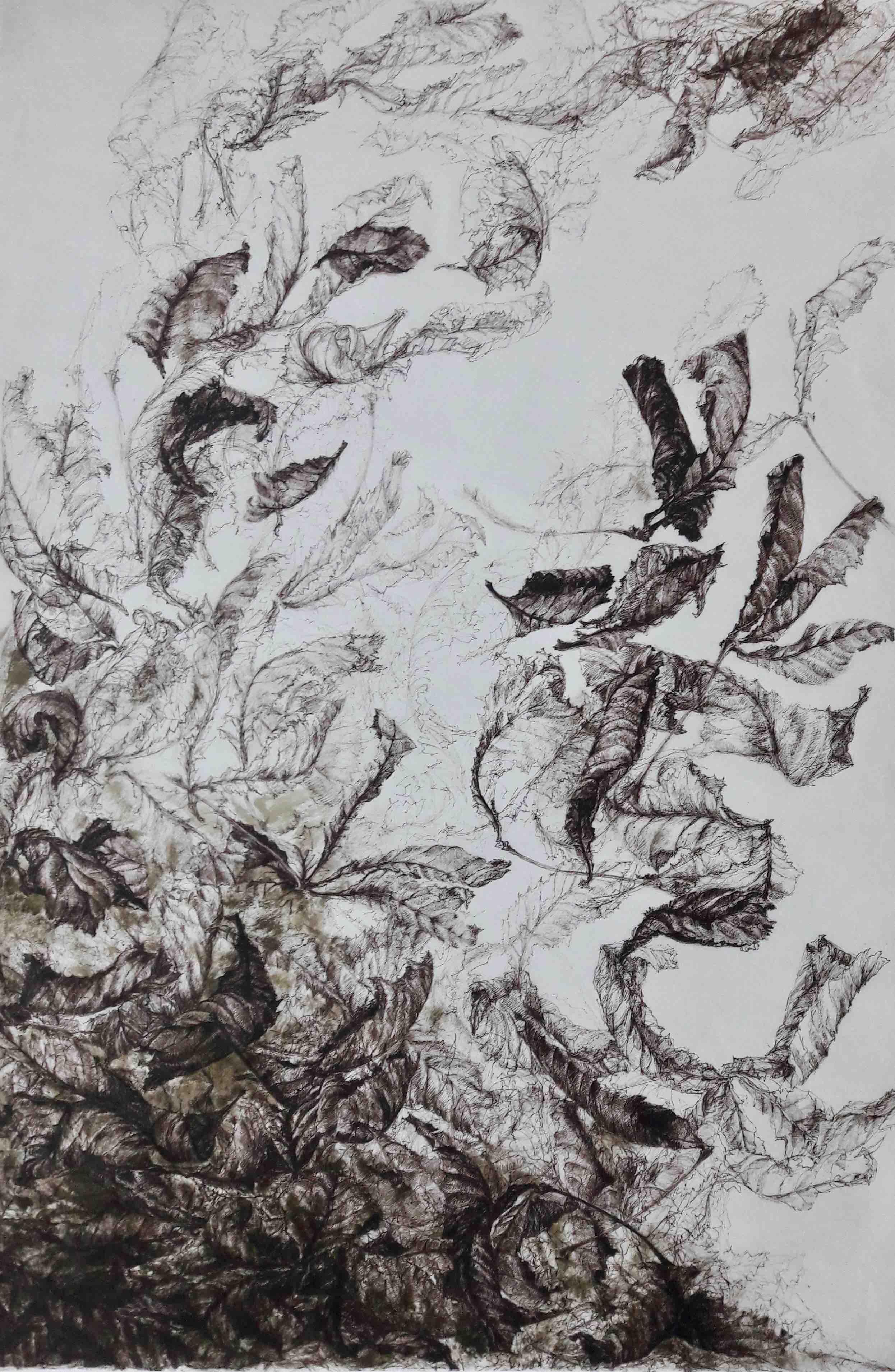 Terre à Ciel (II) - Feutre sépia sur papier Japon, 96x65cm